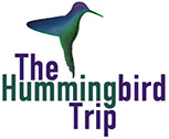 The Humming Bird Trip